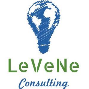 Levene Consulting's profile picture